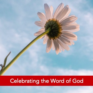 Celebrating the Word of God