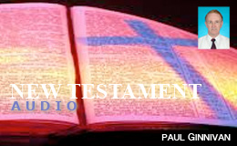 Audio New Testament